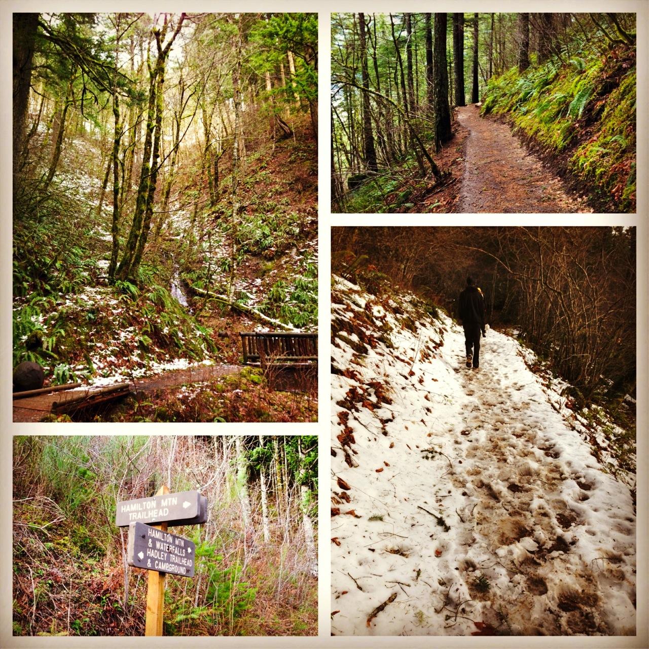 Hamilton Trail