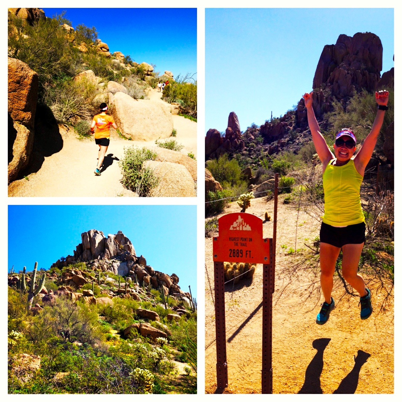 Hiked Pinnacle Peak!