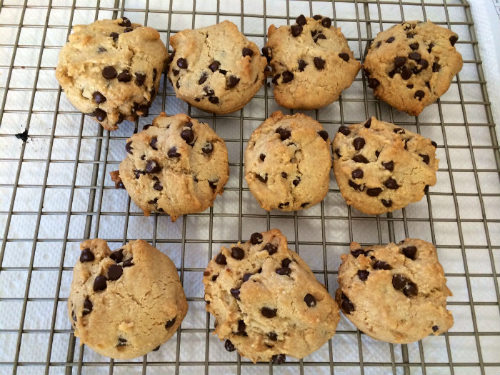 Paleo Vegan Chocolate Chip Cookies   The Tao of Me