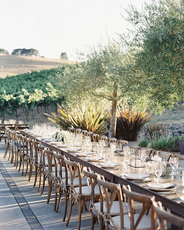 Sonoma summer weddings will never get old ✨✨✨✨ Coordination : @barielexaevents  Photography : @esmeraldafranco_ DJ : @dartcollective Rentals : @encoreeventrentals Dress : @novellabridalsf Catering : @figcaters Venue : Private Estate