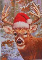Whitetail.Deer.xmas.jpg