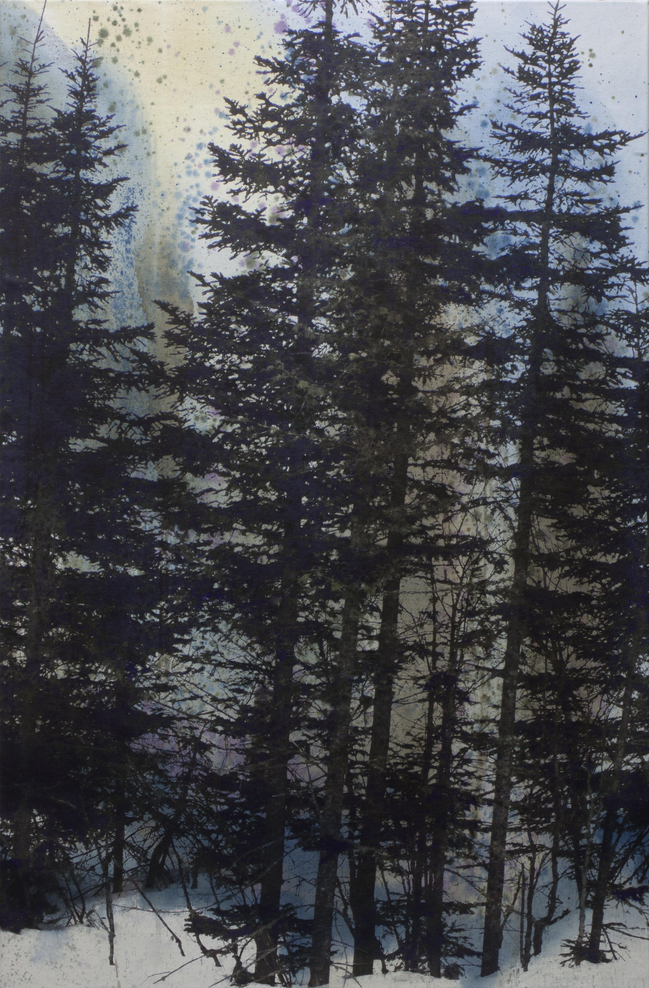 Forêt boréale no 2  techniques mixtes sur toile  122 x 80 cm   2018