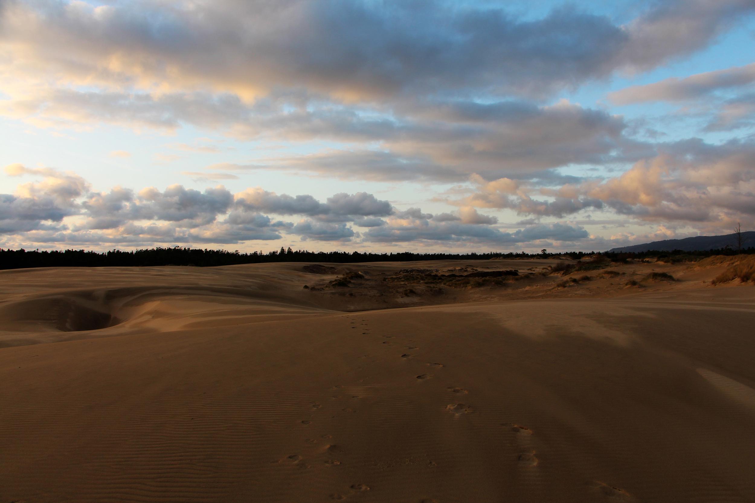 Sand Dunes National Park, OR