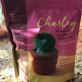 Charlie Cactus Kit