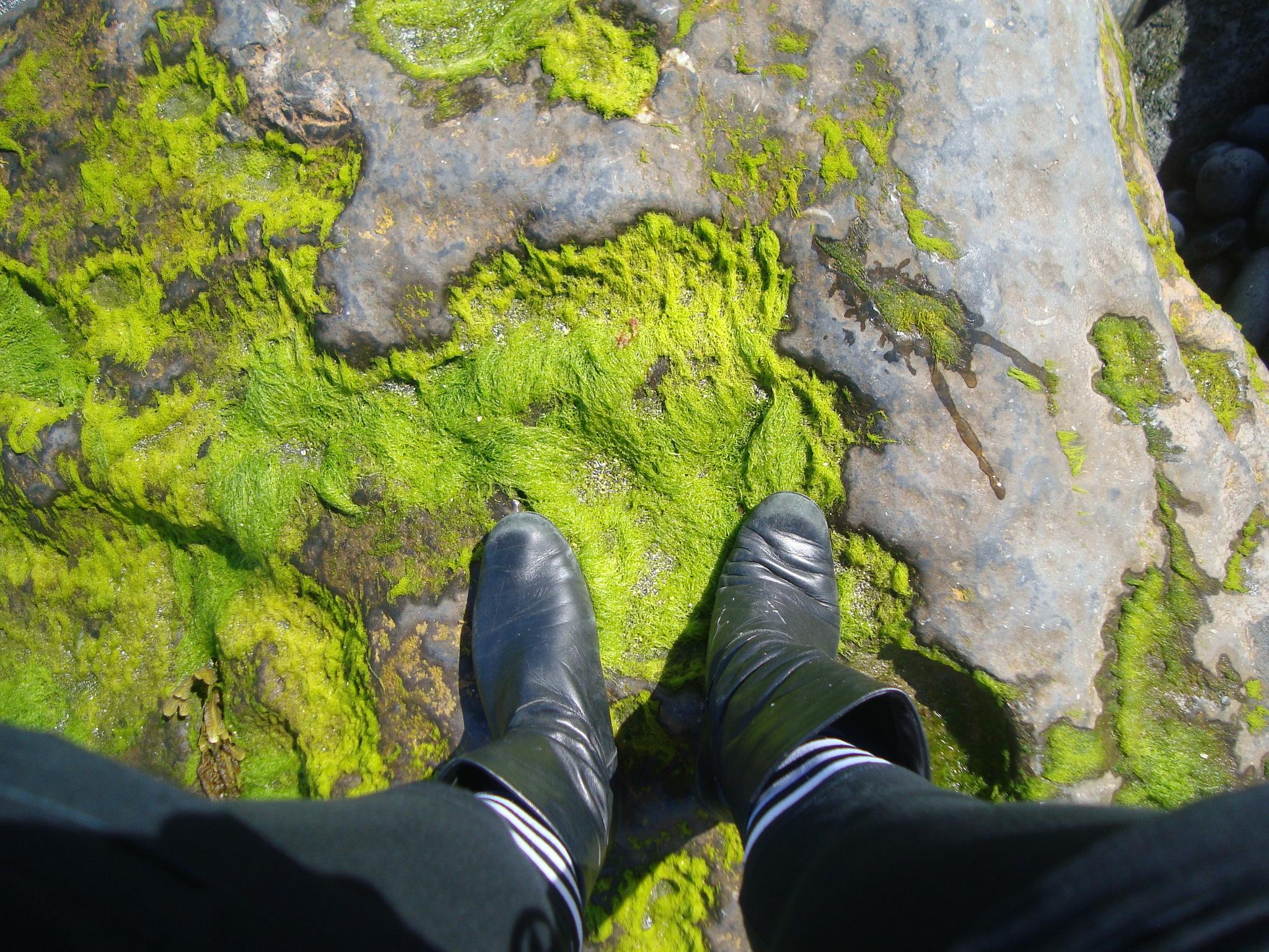 Inishmore Aran Islands Ireland .JPG