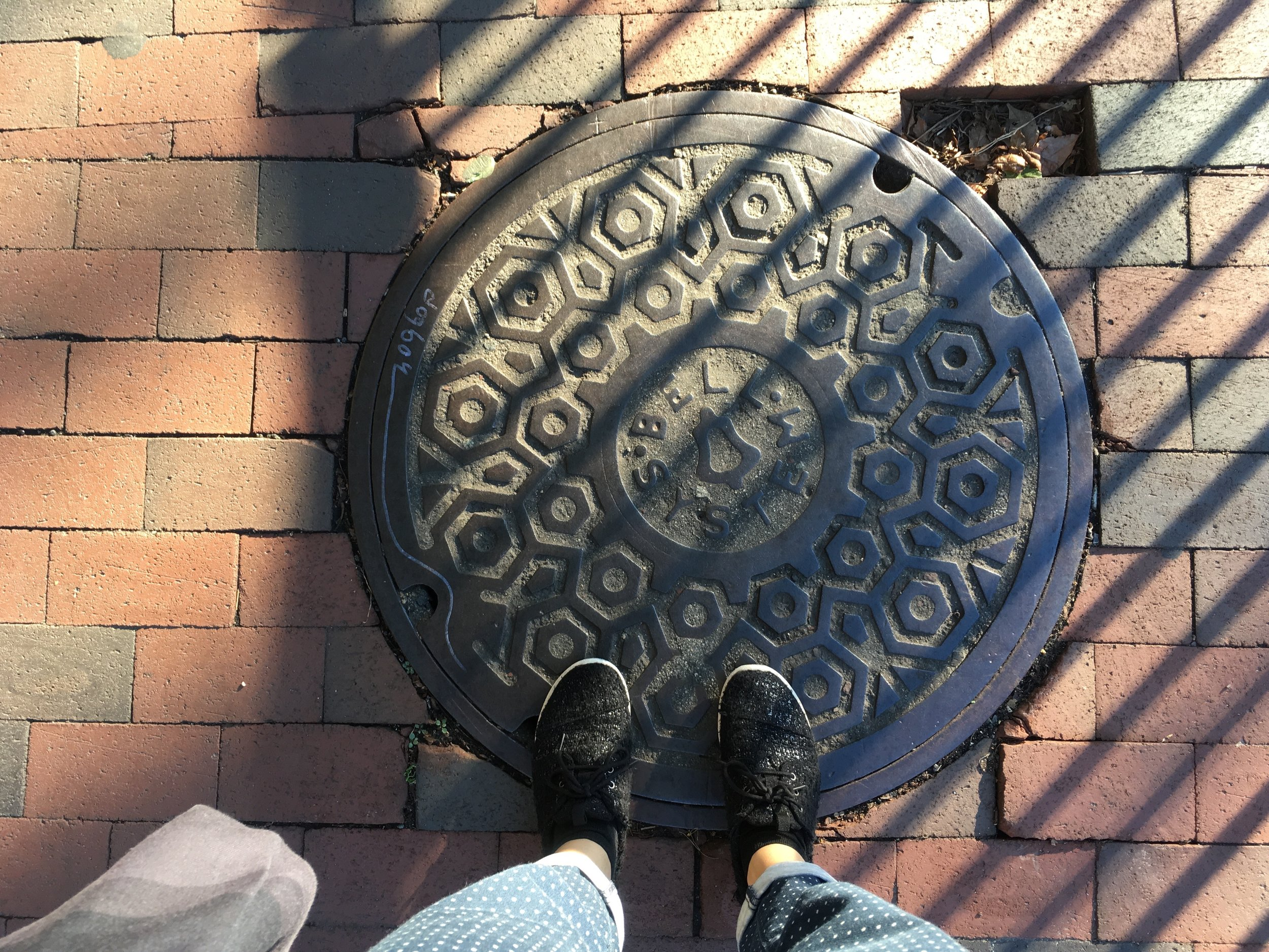 Harvard Boston MA.jpg