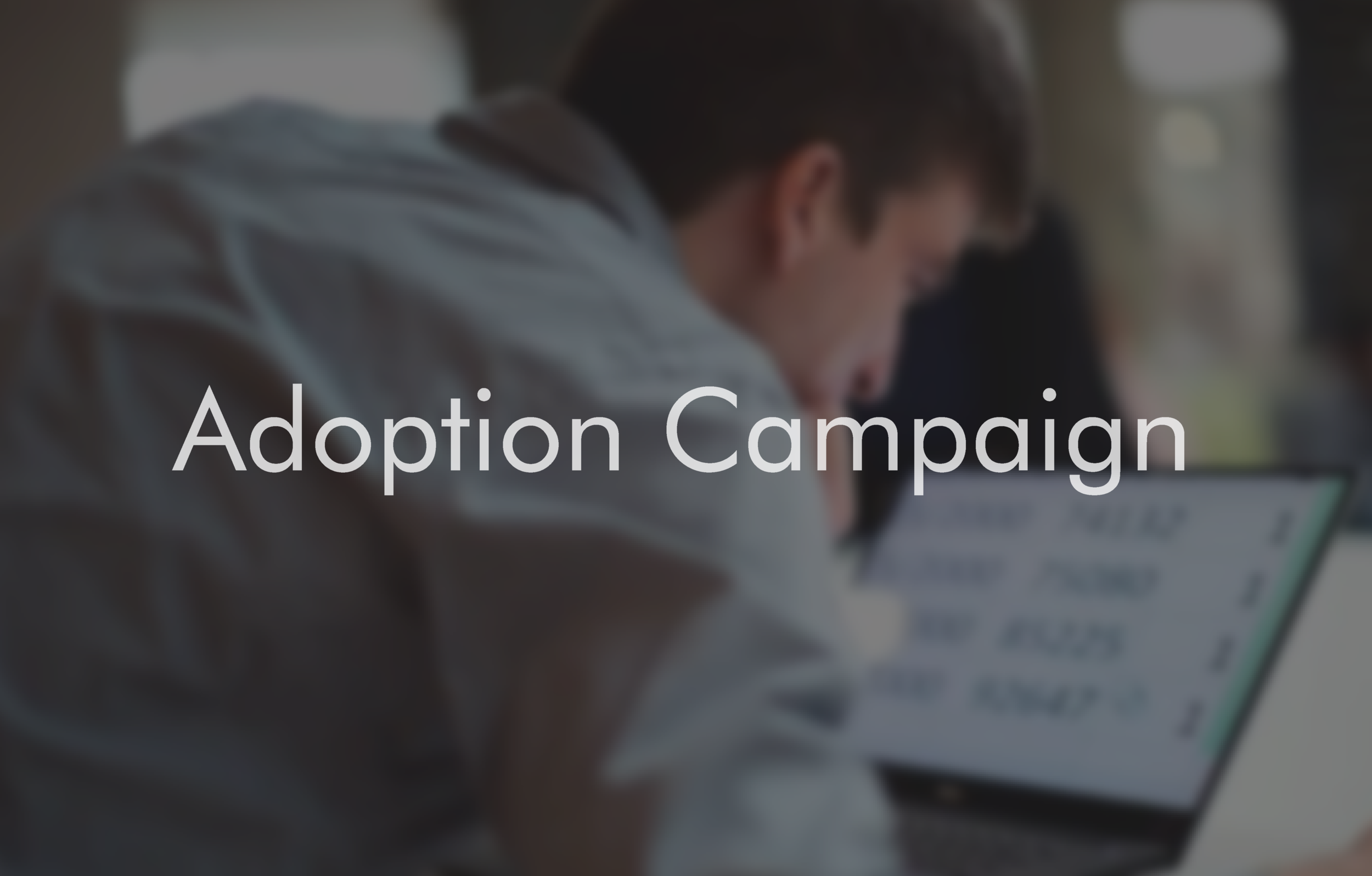 Adoption Campaign-01.png