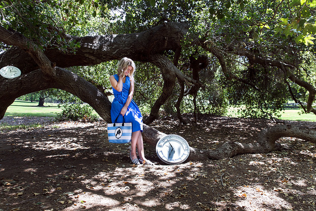 Harveys Alice In Wonderland Collection