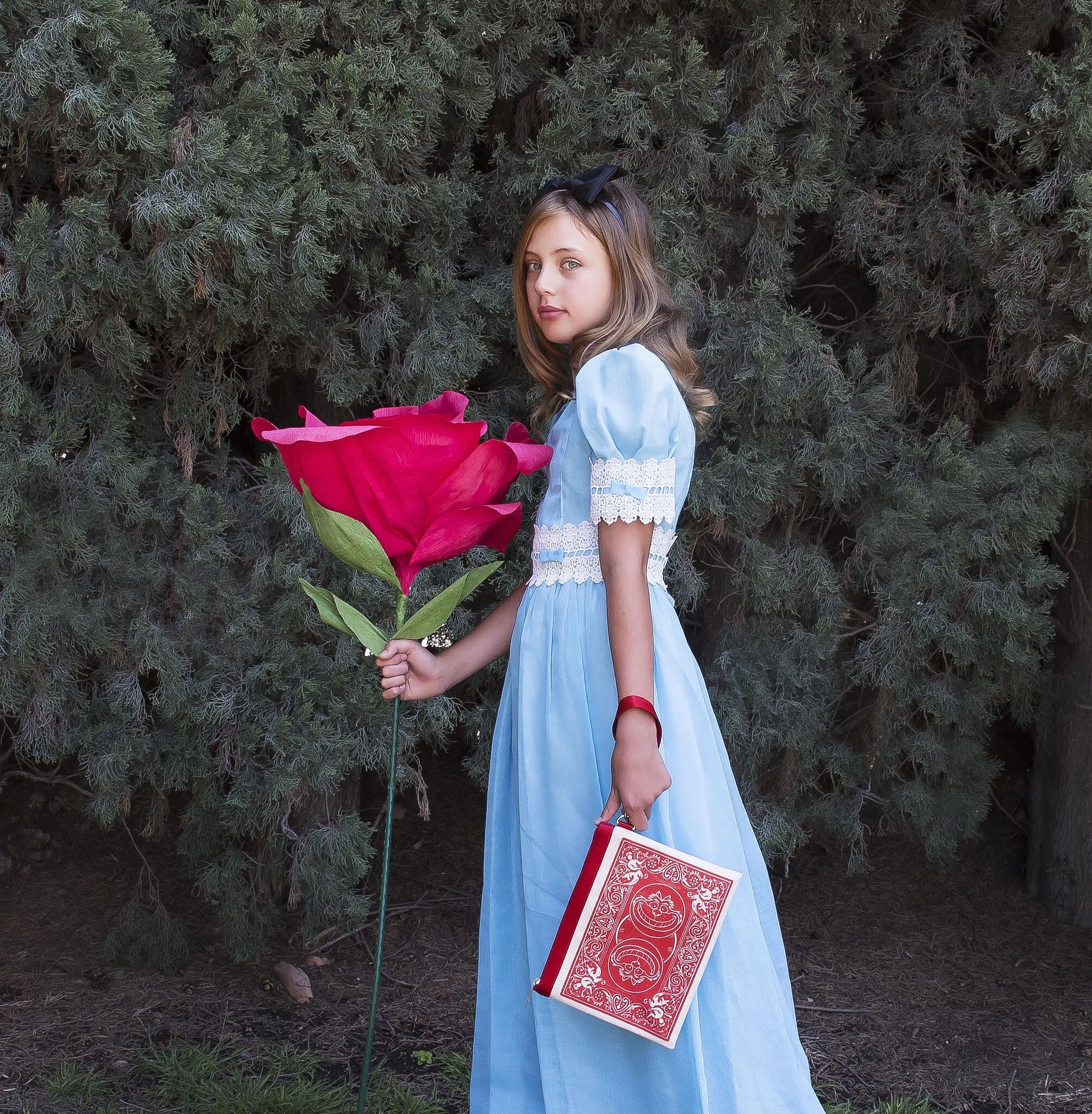 Harveys Alice In Wonderland Collection PART 2 — FLORIDA