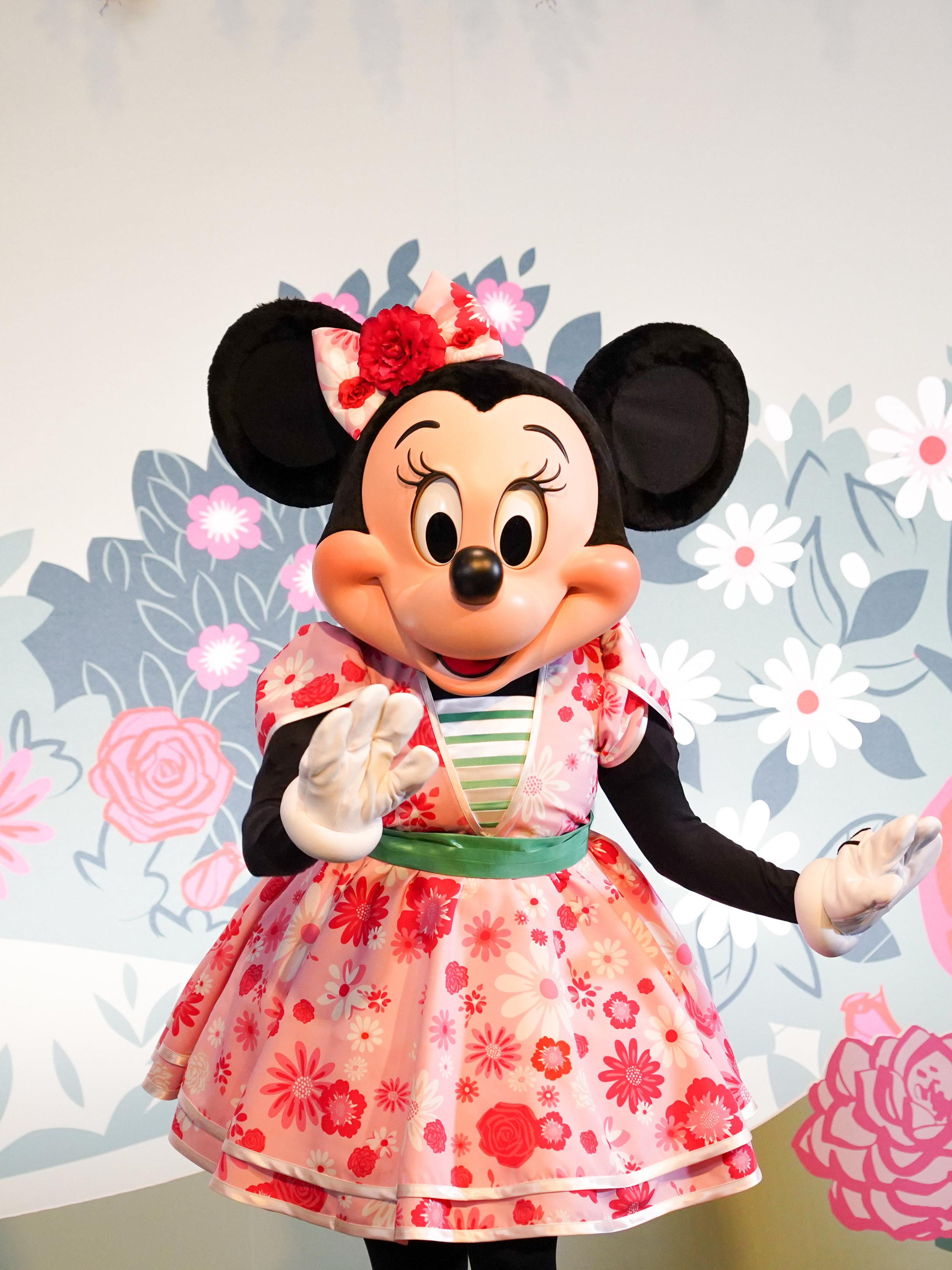 Minnie's Garden Party Dress