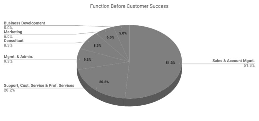 Google_FunctionBeforeCS.png