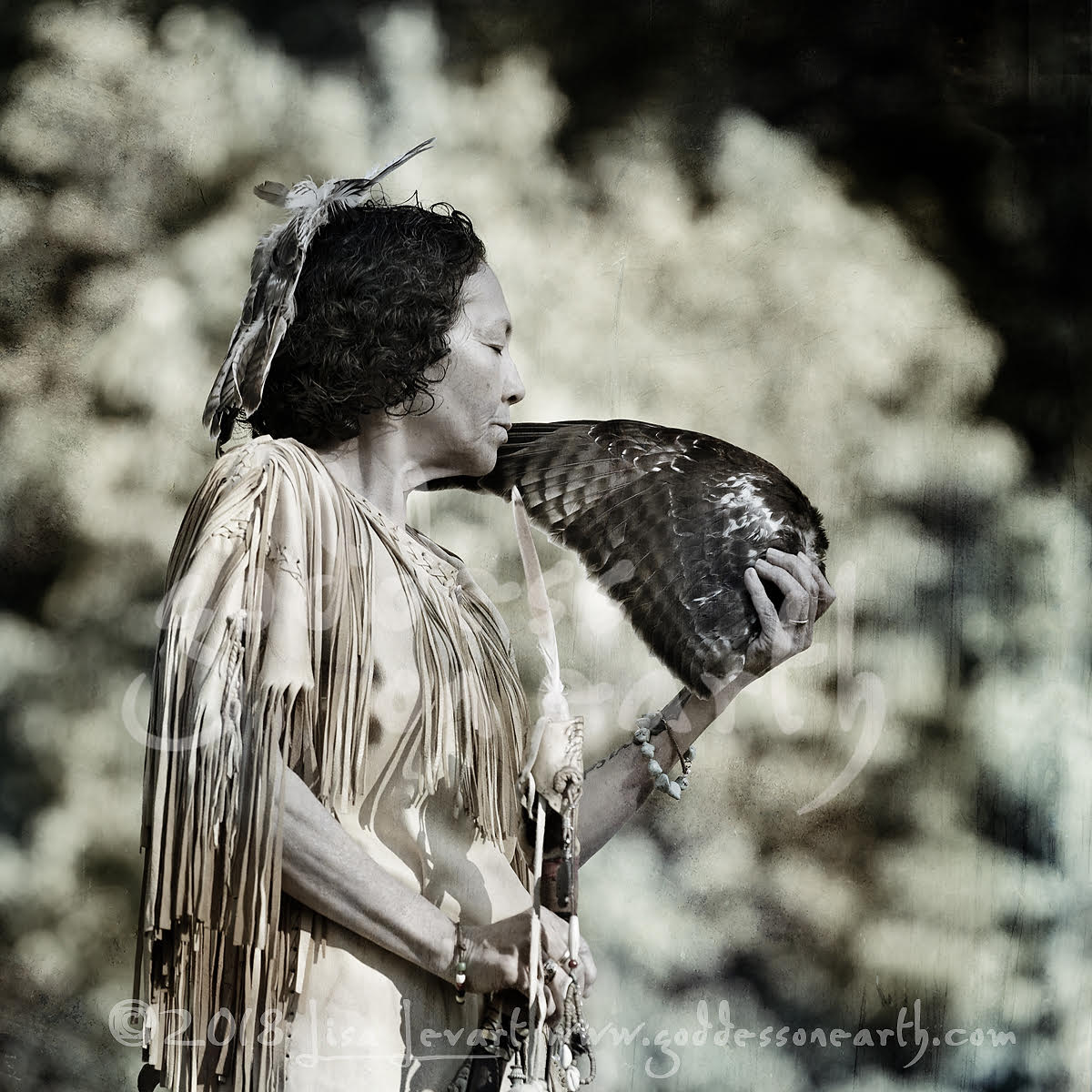 Hawk Woman, Lanape tradition    By Lisa Levart