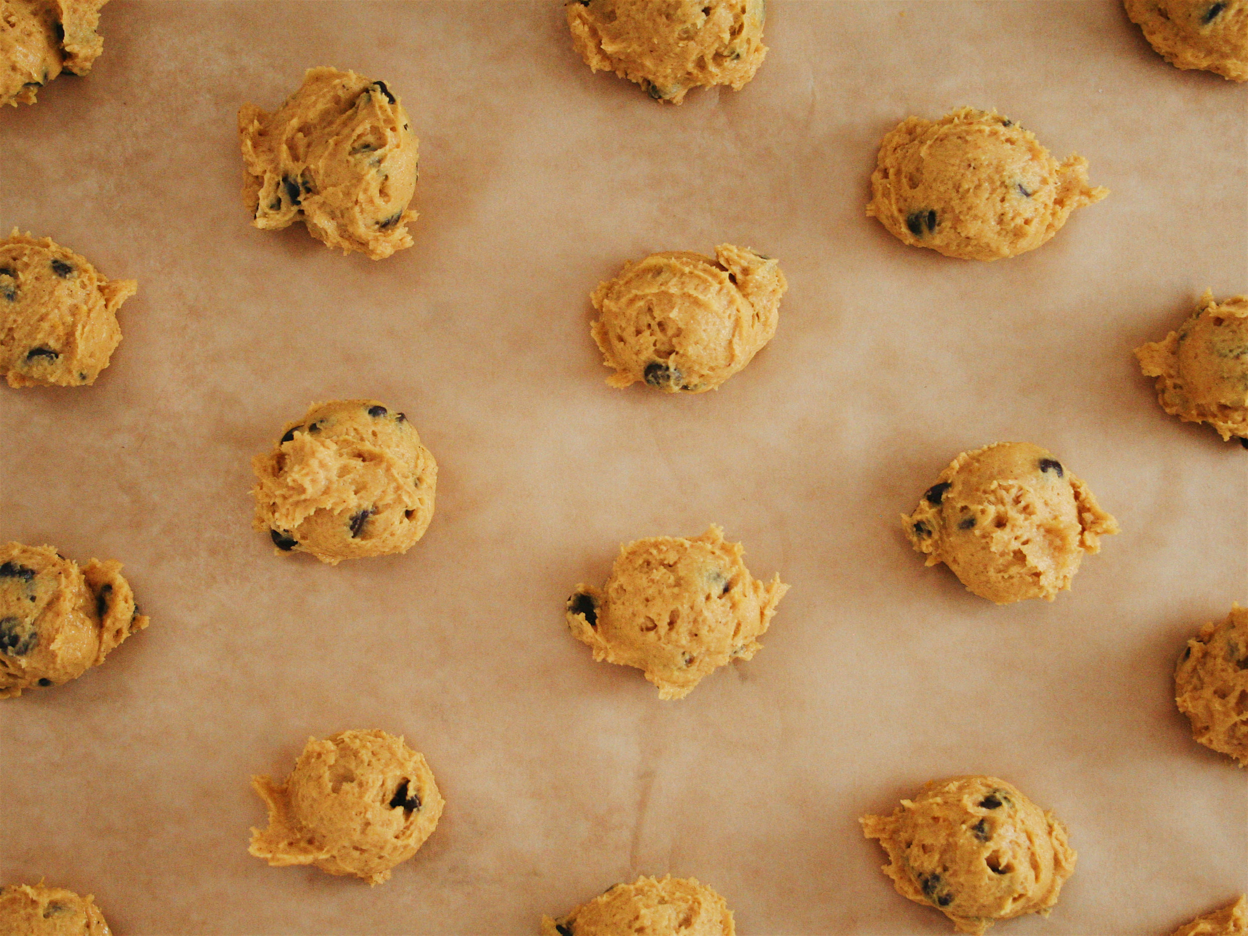 Pumpkin Chocolate Chip Cookies from The City Skillet