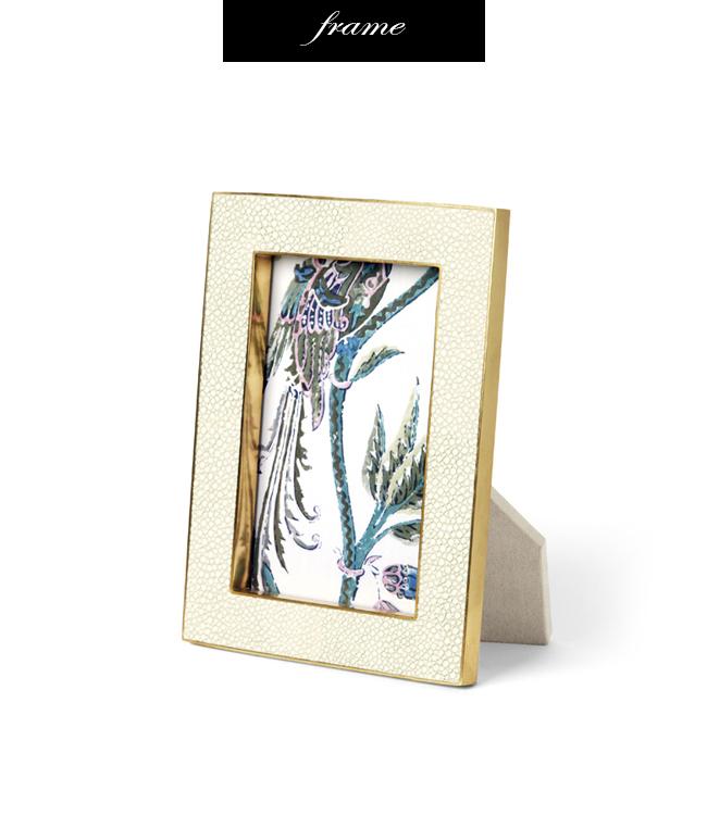 Aerin Shagreen and Brass Frame