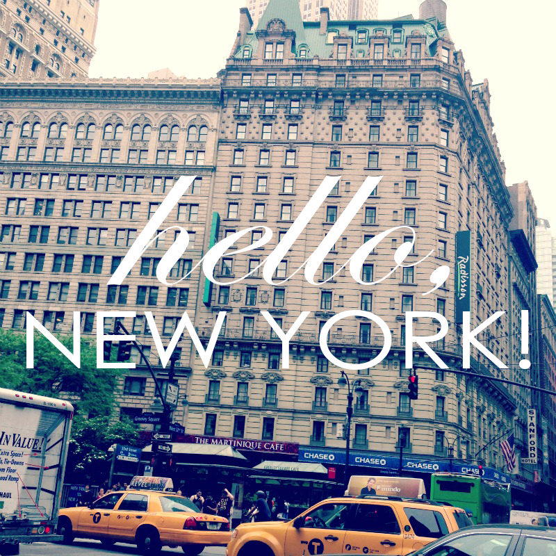 My Whirlwind Daytrip to New York