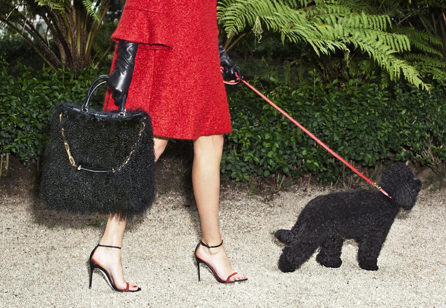 TCH Carolina Herrera Gaspar Handbag Collection