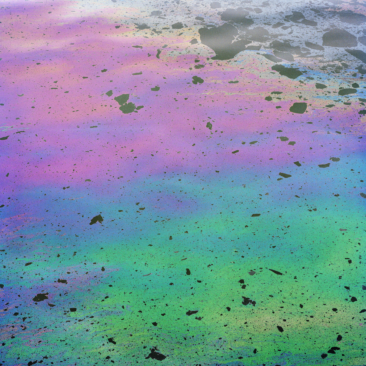 TF_Oil_001.jpg