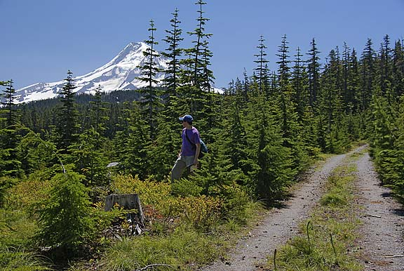 Ground truthing (like surveying) on the slopes of Mt. Hood. My partner happened to be a professional photographer!