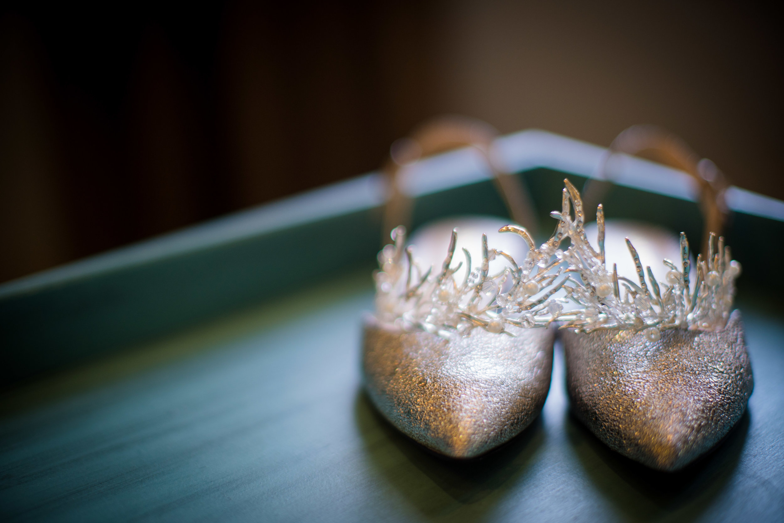 Salt and Pine Photography