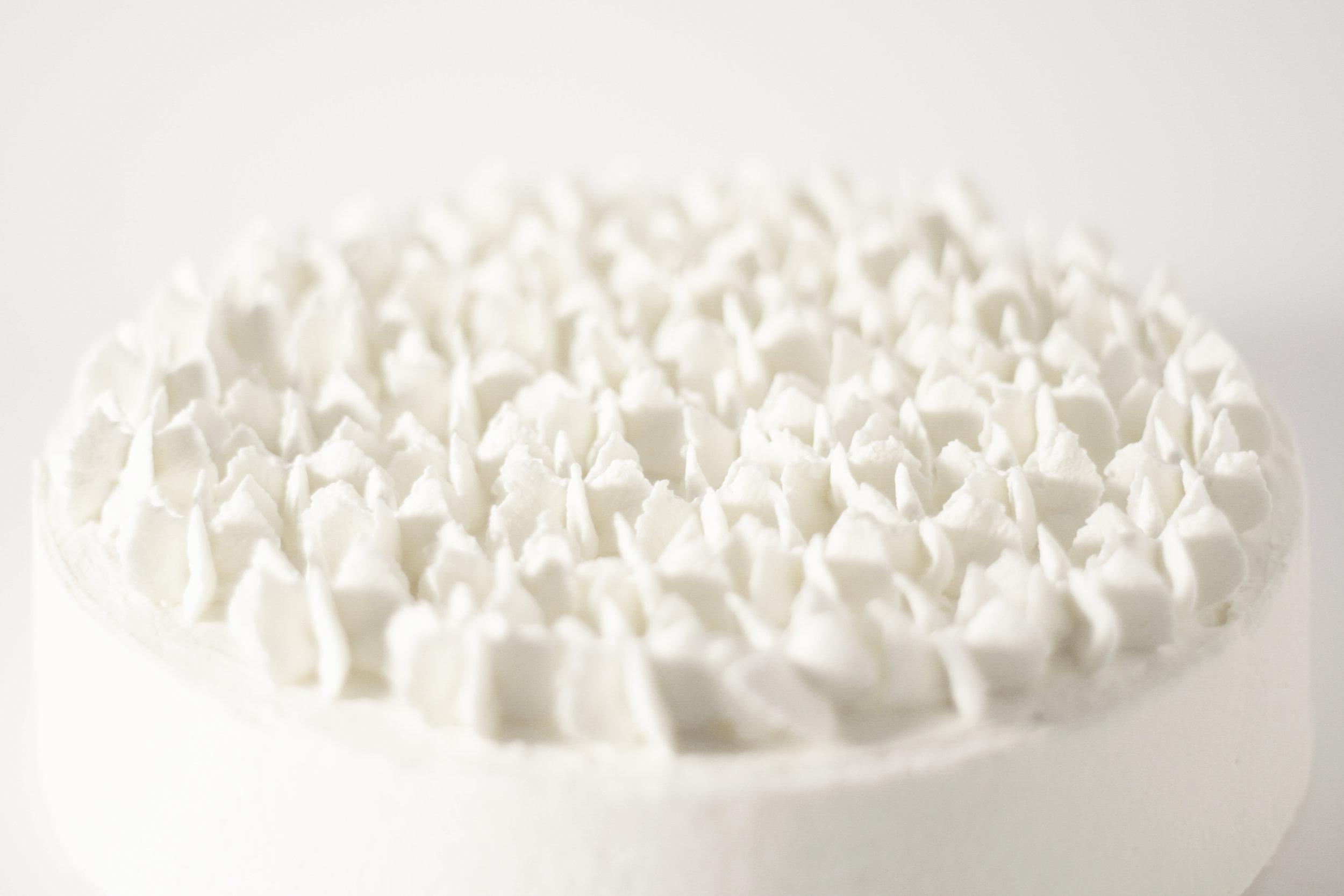 CAKE_young_coconut_cream05b_fade.JPG