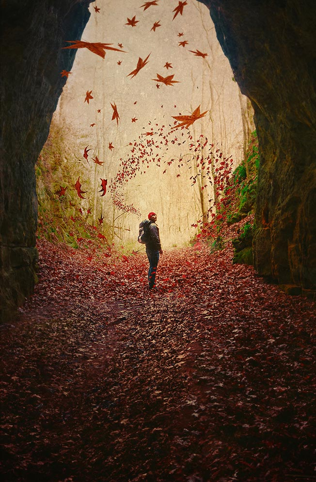 """The cave you fear to enter holds the treasure that you seek.""  ― Joseph Campbell"
