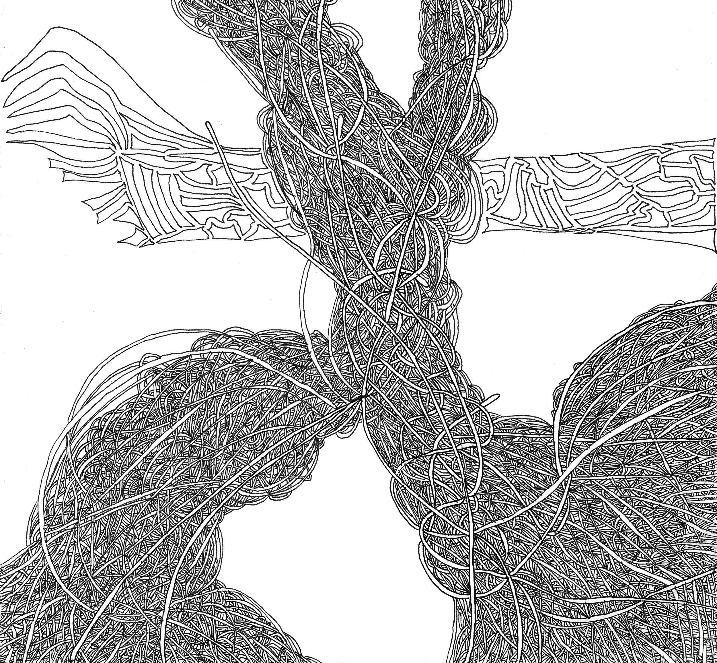 Beginning  (2014)  Acid Free Pen and Paper 5 in x 7 in 8 in x 10 in