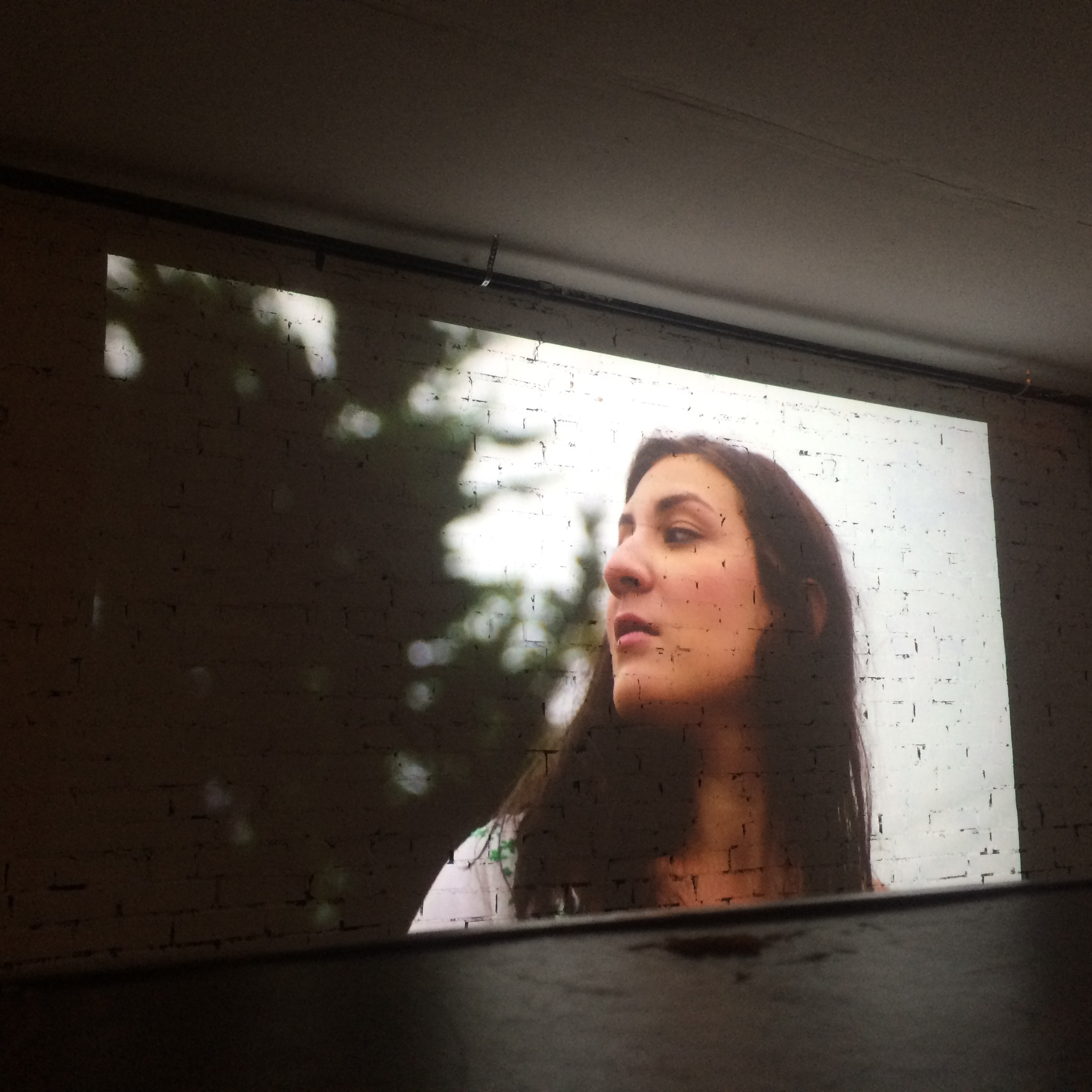 Stars Are All Mapped  (2012)  Short Film Projections Shown at The Denver Art Society   VIDEO