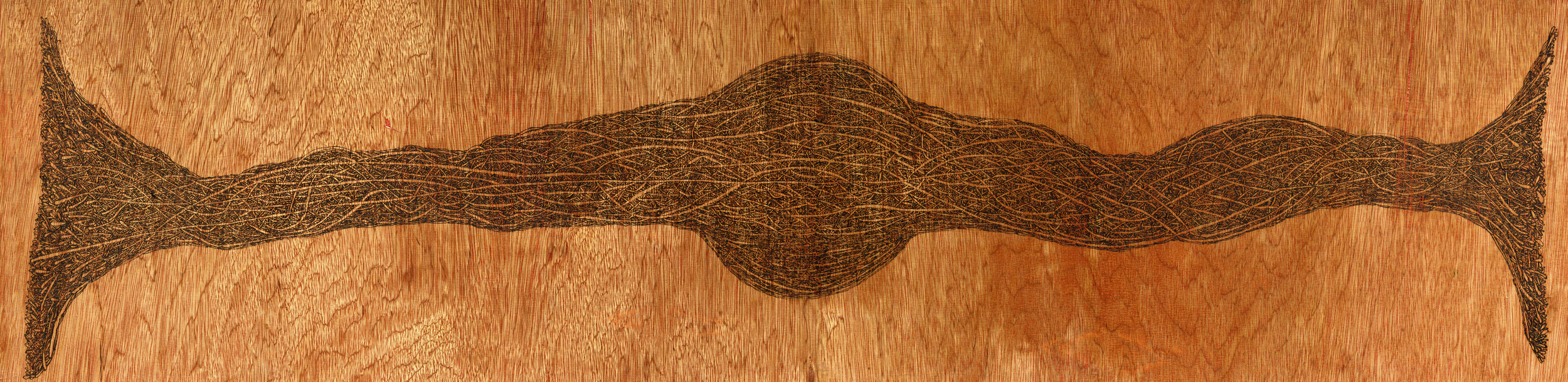 Unlimited Potential (2015)  Wood Burning on Pine Wood 49 in x 2½ in x 12 ½ in  SOLD
