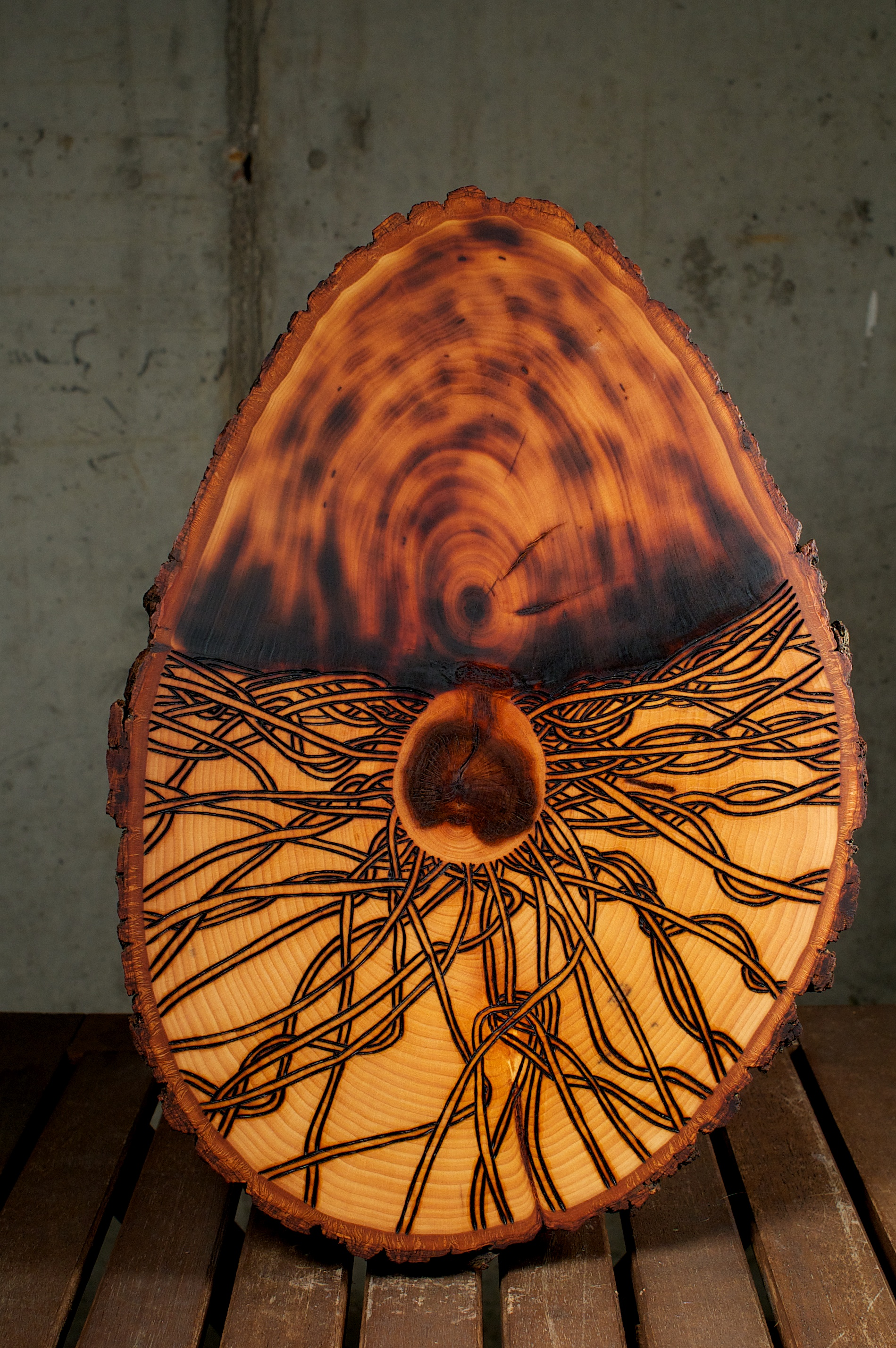 The Seed   (2015) Wood Burning On Bass Wood Bark Slab 15 in x 2  ½  in x 10  ½  in