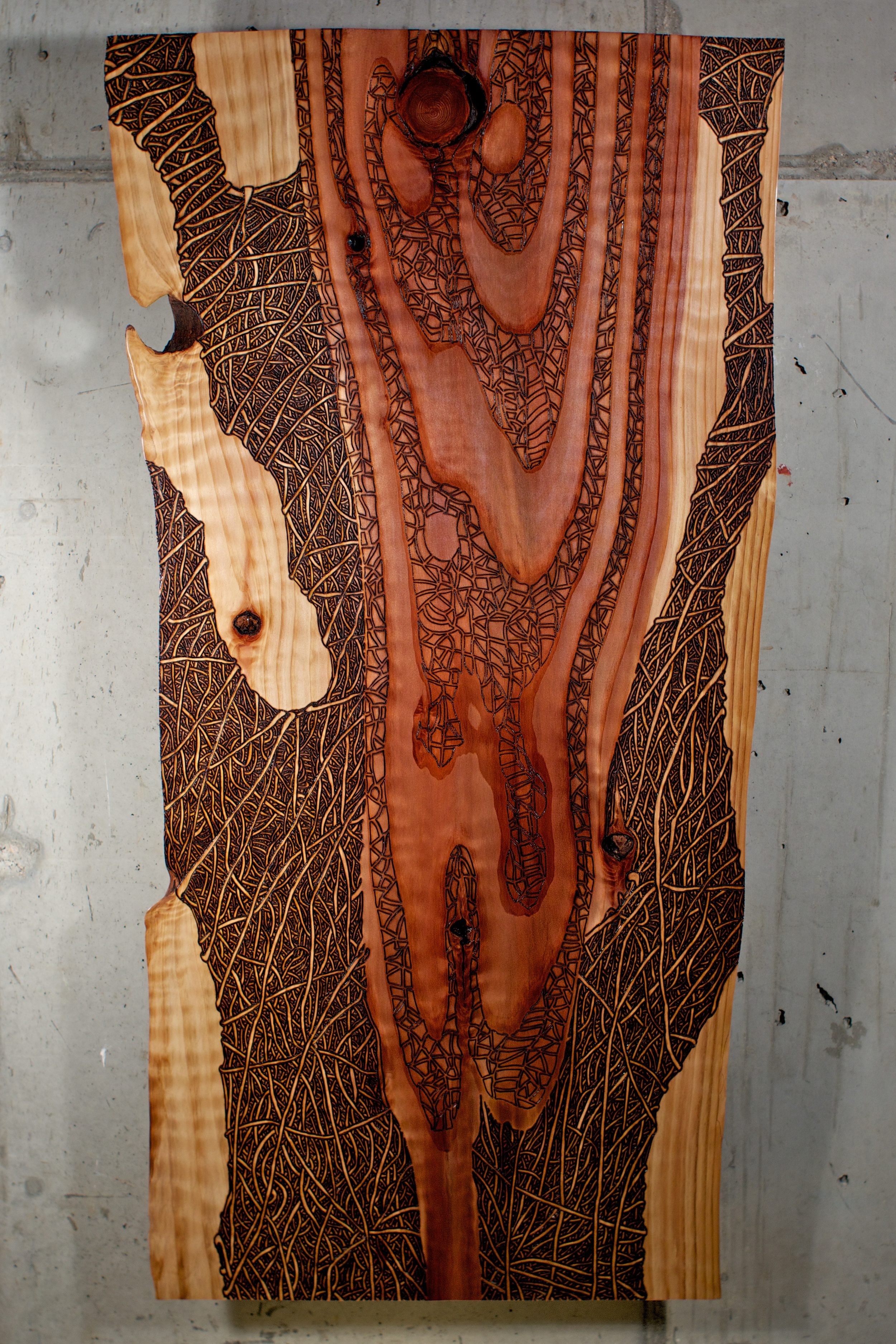 Red Wood (2016)  Wood Burning On Red Wood Live Edge Slab 43 in x 2 ½in x 21 ½in