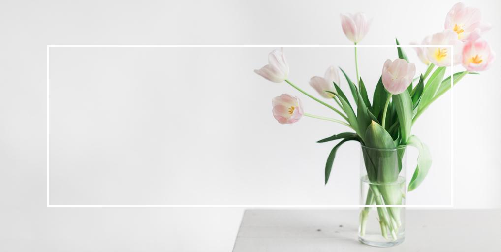 contact_tulip.jpg