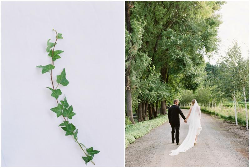 bride_groom_walking_holding_hand_in_hand.jpg