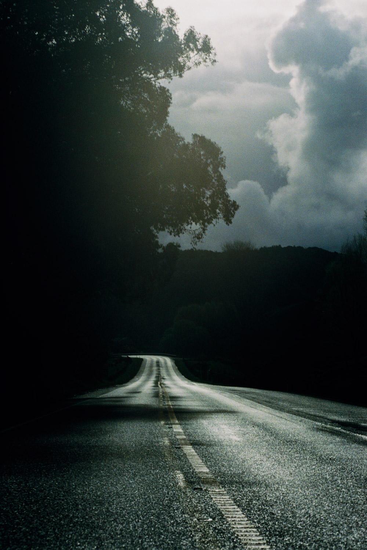 Paradise Road by Brian Sweeney with essay by Stuart McKenzie,  Edizioni Charta, Milan. $39.95