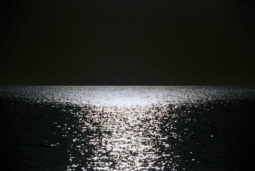 """RAUMATI (BLACK) 2007, 20"""" x 30"""" $950"""