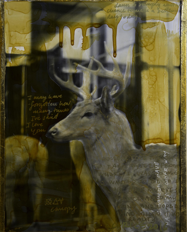 """""""Deer Diary"""" (2016)"""