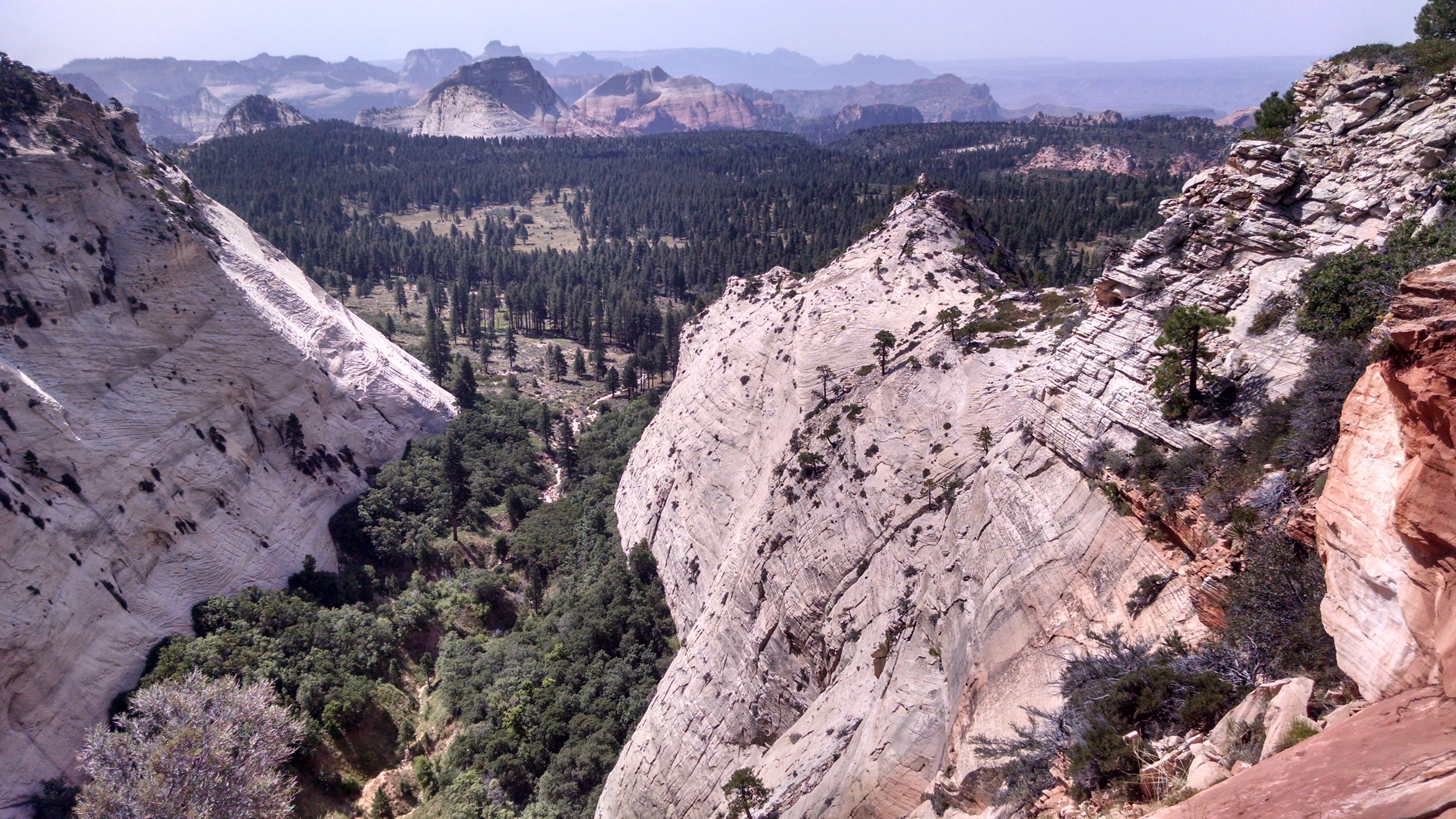 """Etymology: In Utah's Canyon Country Place Names, Volume 2, Steve Allen notes that the USGS provided the name for """"the deep recesses in the south face of this white-cliff mountain"""" (1)"""