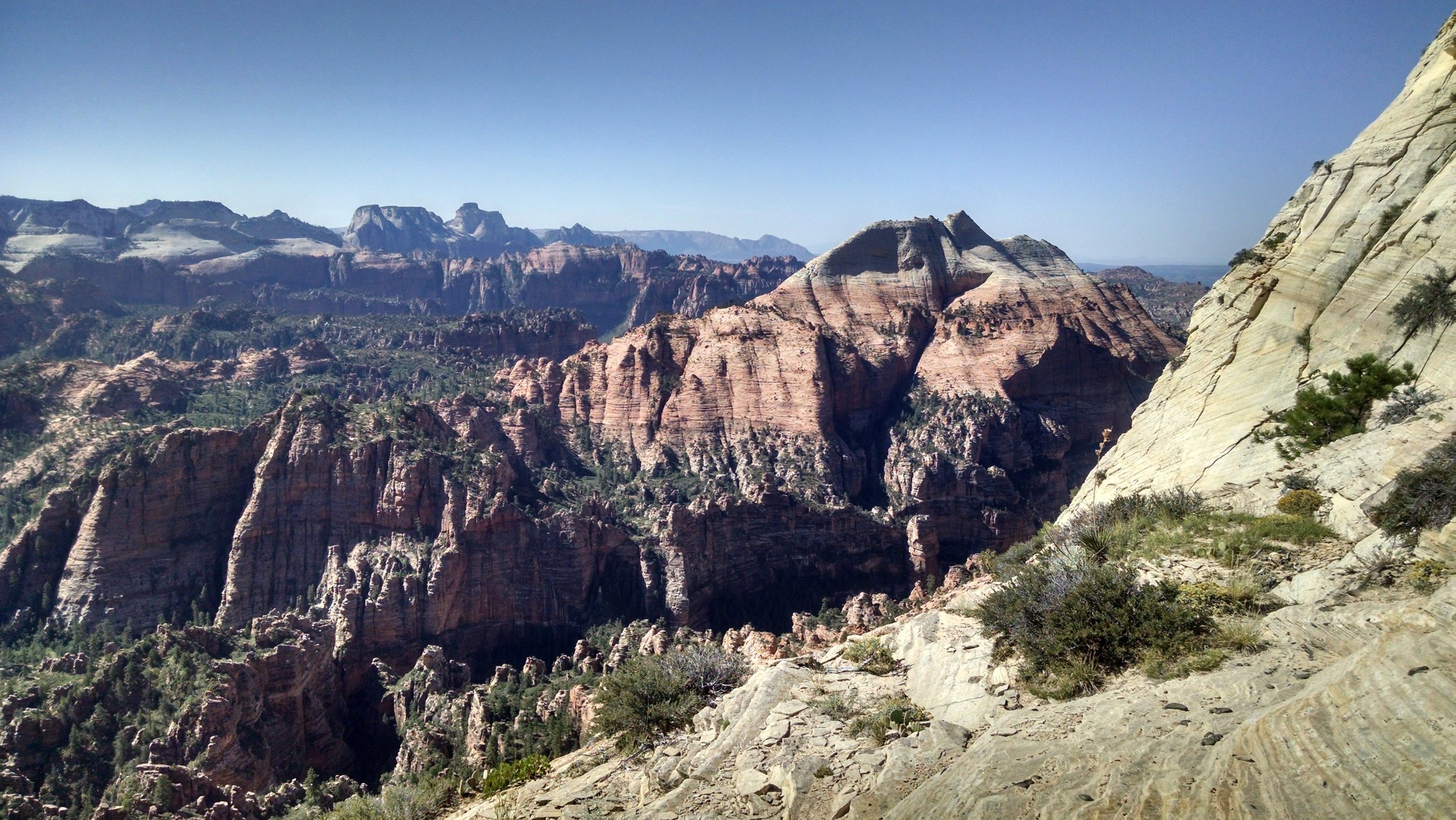 Saddle View South.  South Guardian Angel, Main Zion Canyon in distance