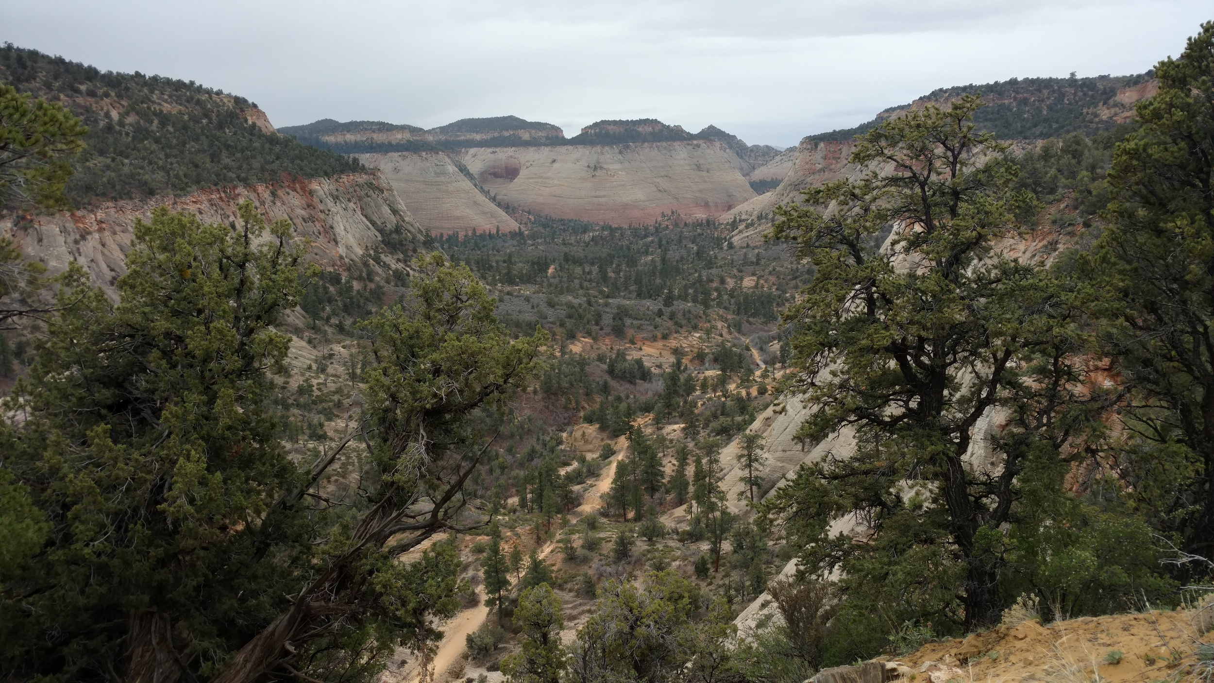 Looking down on the East Rim Trail