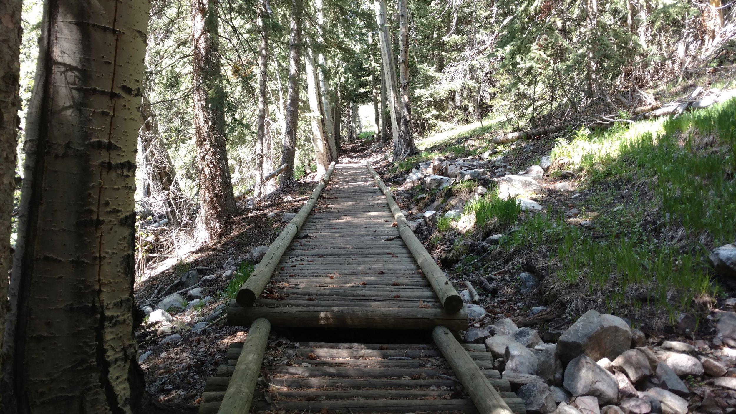 Wooden Walkway in wet area