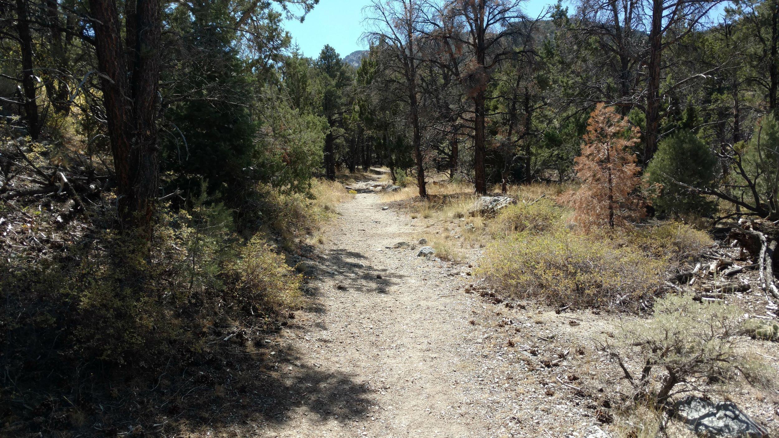 Pole Canyon Trail