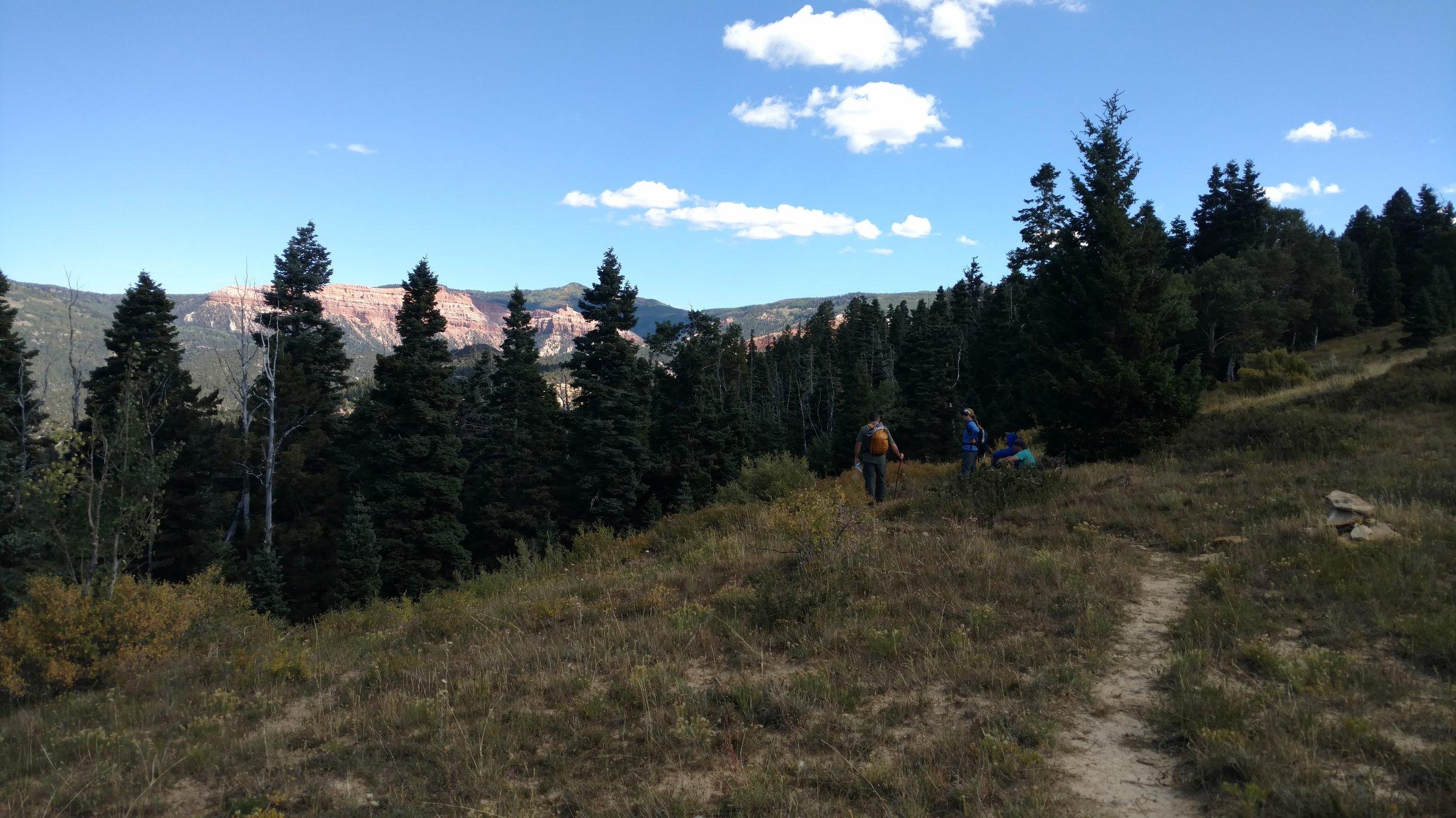 Trail view north toward Brian Head