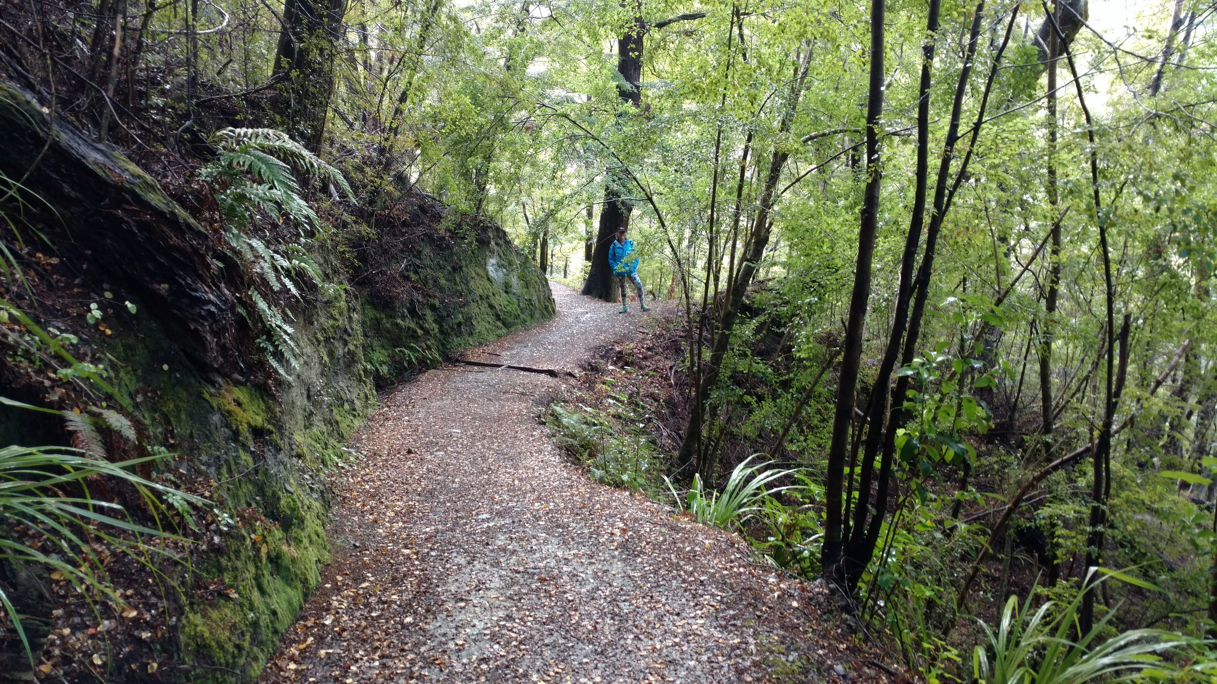 Linda hiking the loop