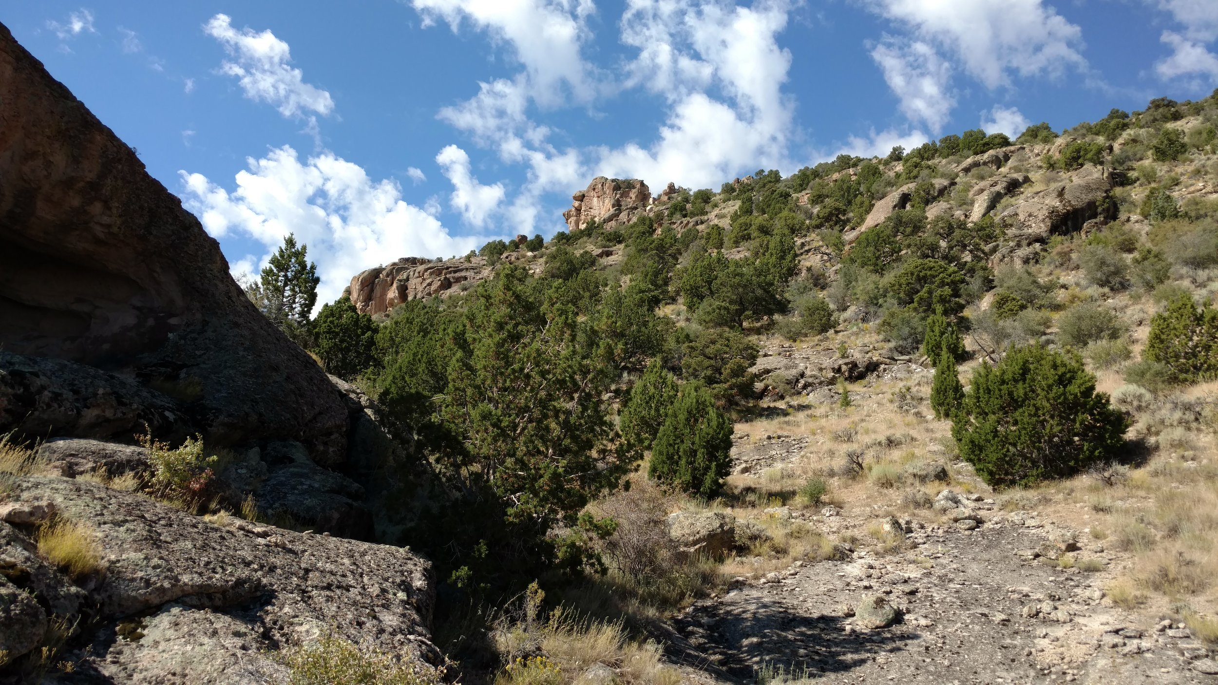Trail view of the massive rock outcropping with reasonable access to the top