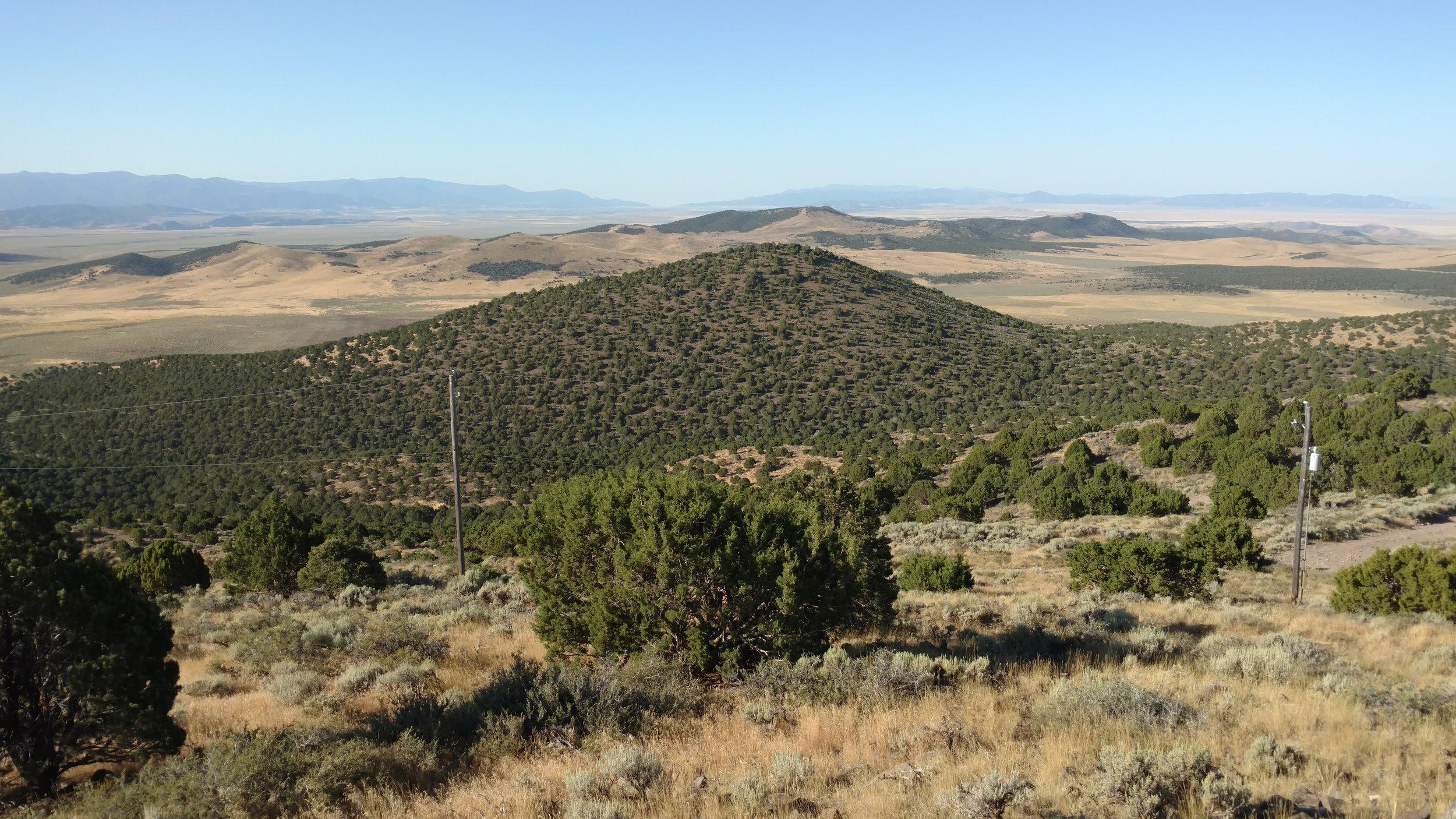 Baboon Peak; Iron County; Baboon Peak - UT quad; Rise 290'; UT Rank: unranked.