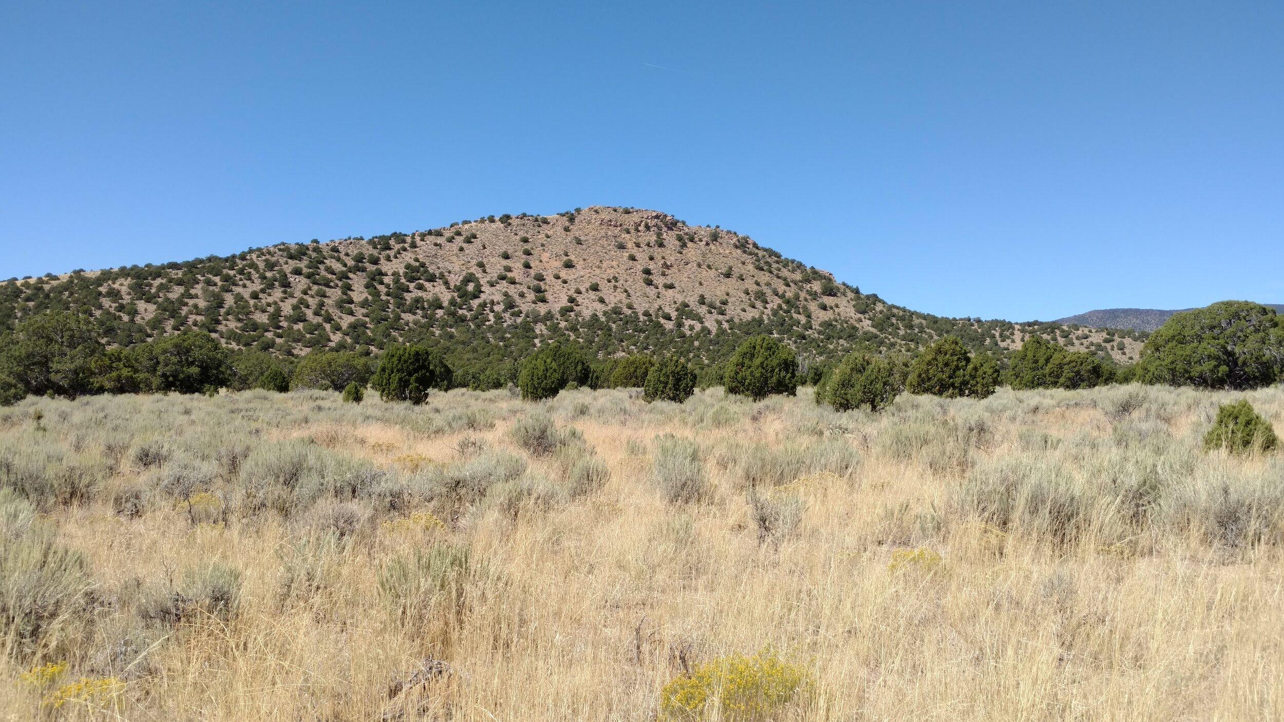 Unnamed Peak 6139, Beaver County, Blue Mountain quadrangle, rise 349, UT Rank 3386