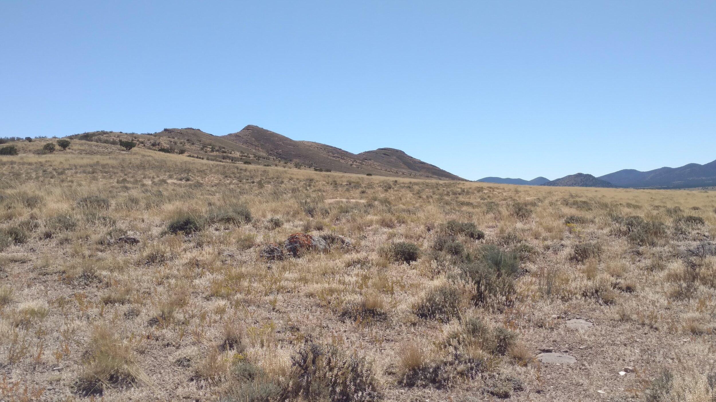 Road view of unnamed peak 6010; Beaver County; Frisco SW quadrangle; UT Rank 3539