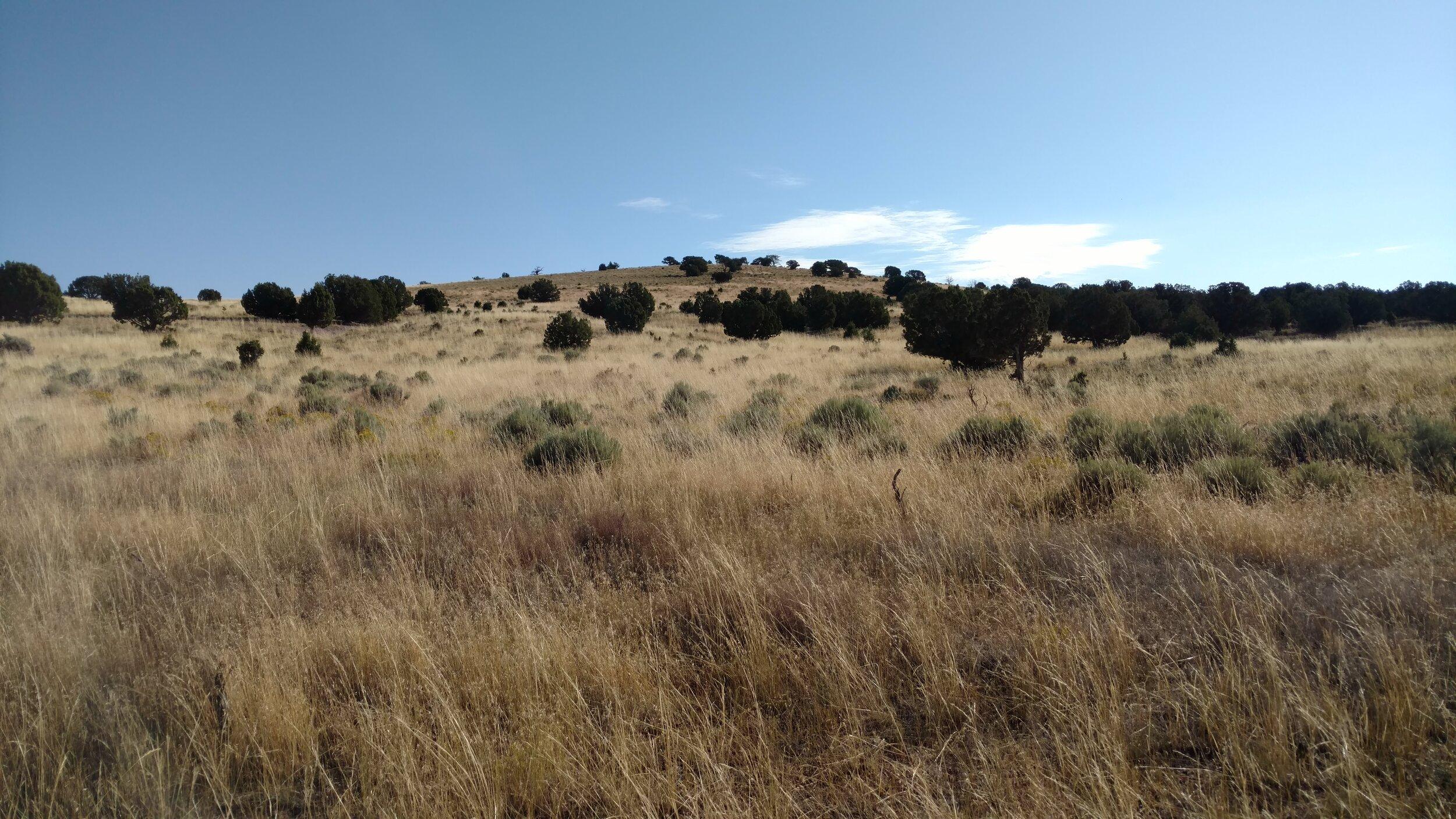 Observation Knoll; Beaver County; Observation Knoll quad; Rise 87'; unranked.