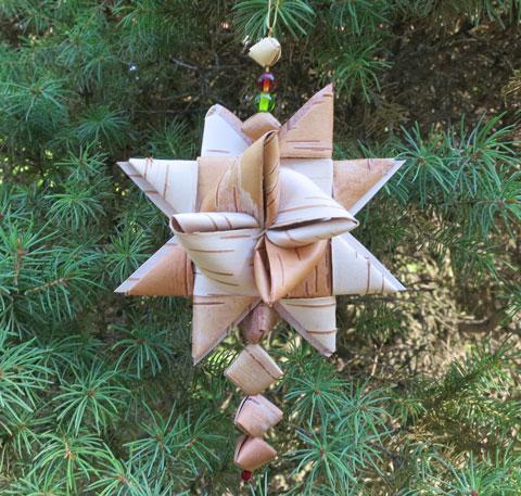 Birch bark star.jpg