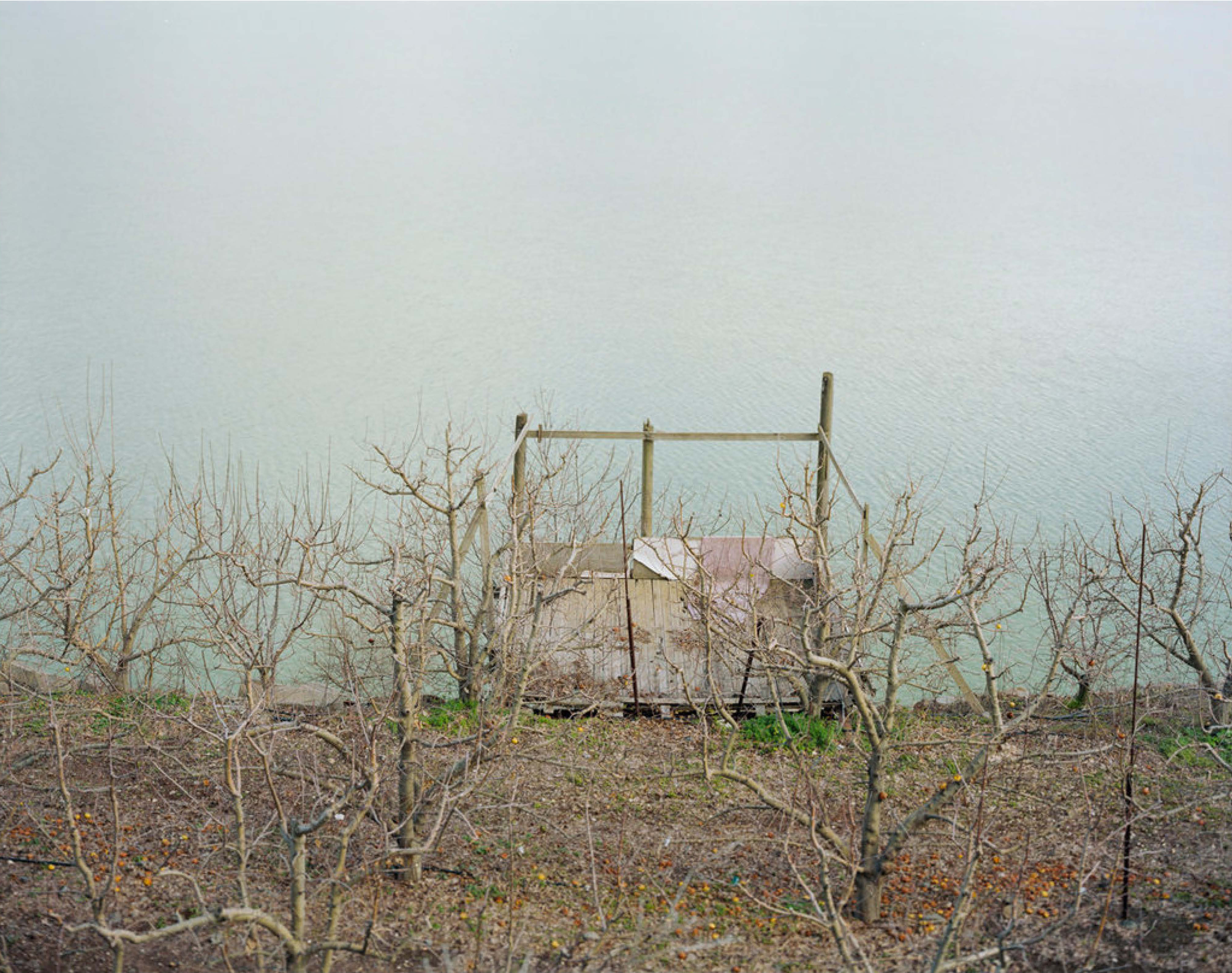 Work by Rea Ben David