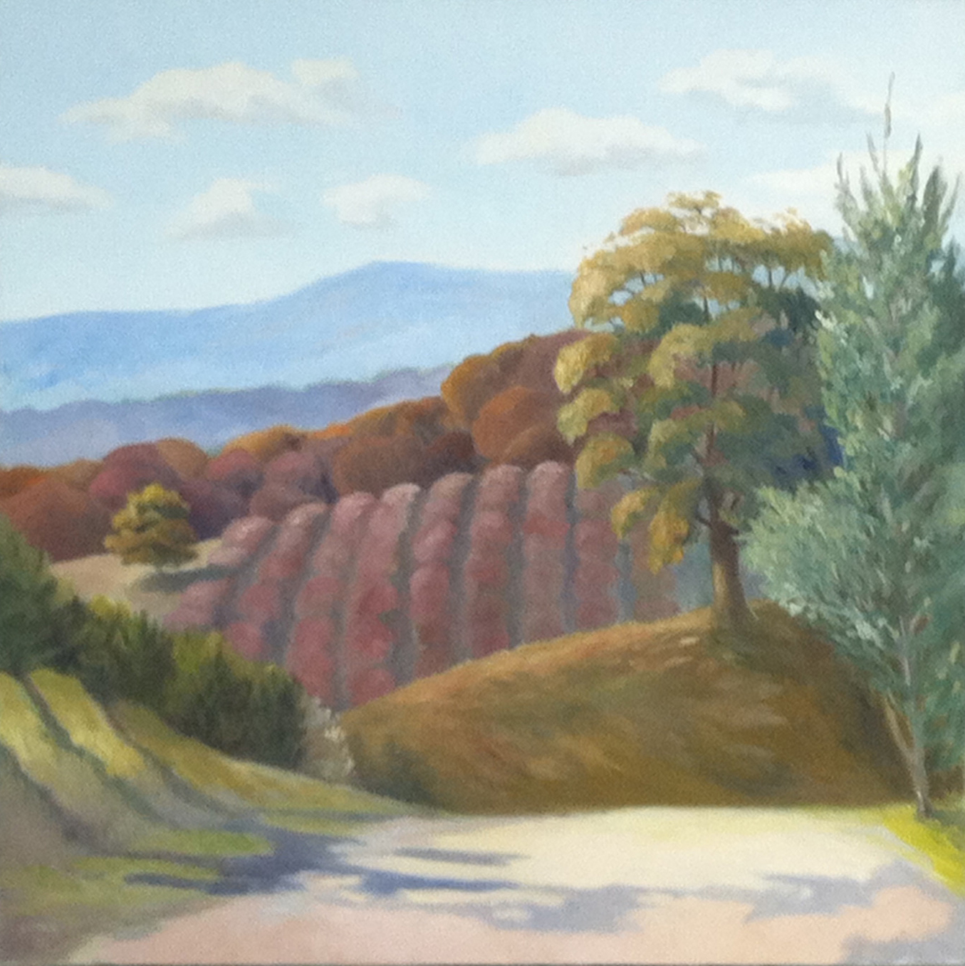 "Fall Orchard | 36""x36"""